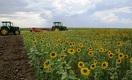 Какие выгоды принесет фермерам кооперация?