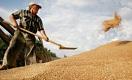 Бесчеловечный бизнес – мечта казахстанского фермера