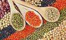 Фермеры Казахстана отказываются выращивать пшеницу