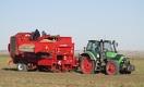 Почему аграрии ждут резкого роста цен на картофель в Казахстане