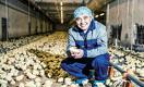 Как производители мяса РК вытесняют российских конкурентов