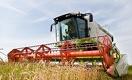 В зерновой индустрии Казахстана копятся проблемы