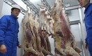 Кто поставляет хорошее свежее мясо в Астану?
