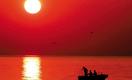 Две трети произведенной в Казахстане рыбы идет на экспорт